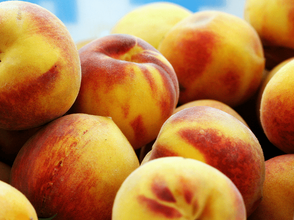 How to make peach schnapps from scratch